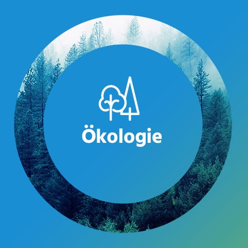 RKW Gruppe - RKW Company Sustainability Ecology DE graphic 1